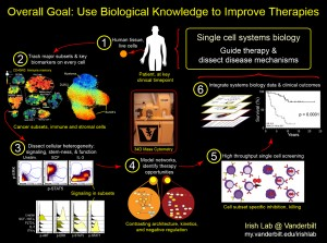Irish Lab Approach: Single cell systems biology for personalized medicine