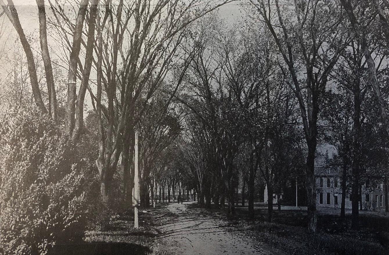 west-campus-elms-1918