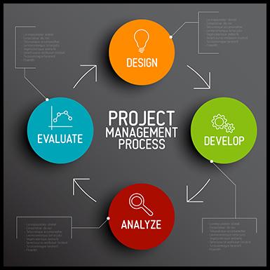 project management vuit project management office